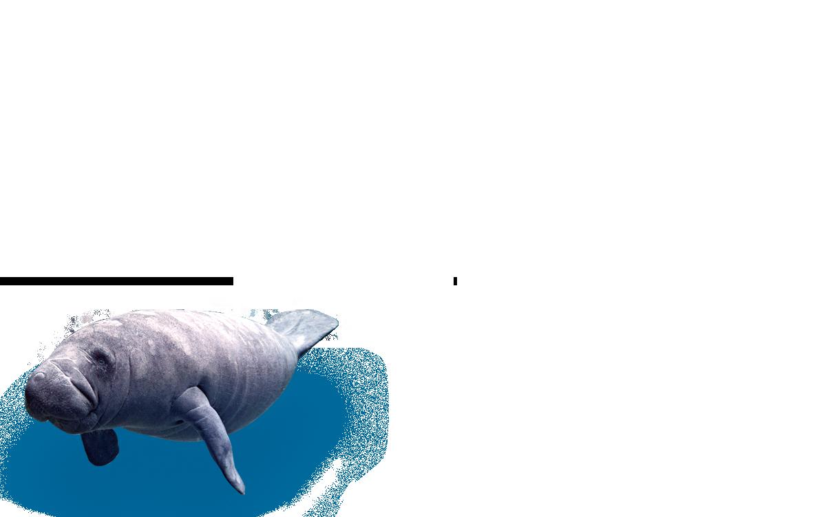 대구의 푸른바다 대구아쿠아리움